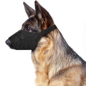 nylon-dog-muzzle
